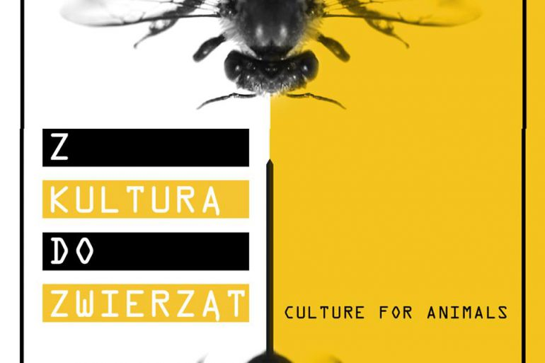 Z Kulturą do Zwierząt